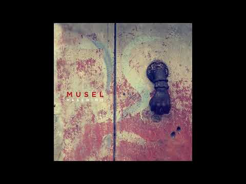 Musel - Sombra e Luz