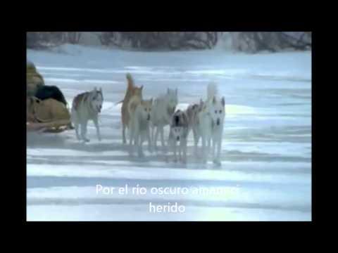 Leonard Cohen By the river dark Subtitulado en español