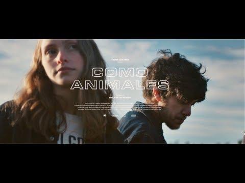 Sante Les Amis - Como Animales (Music Video)