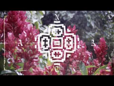 Nicola Cruz - Colibria (History Of Colour Remix)