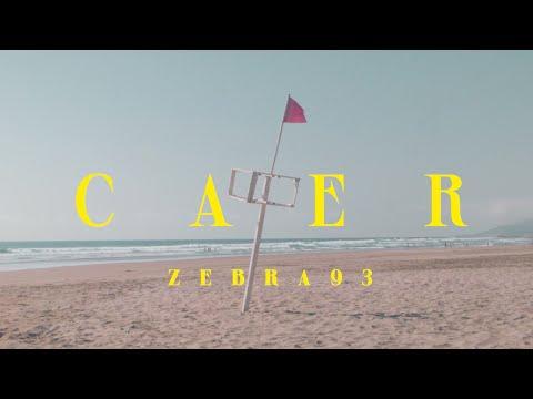 ZEBRA 93 - Caer