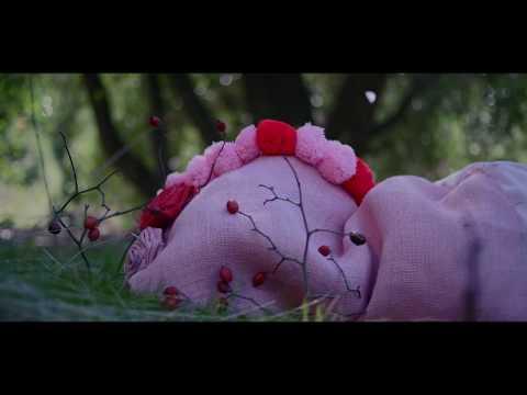 Los furtivos Gnomos - El Jardín ( videoclip )