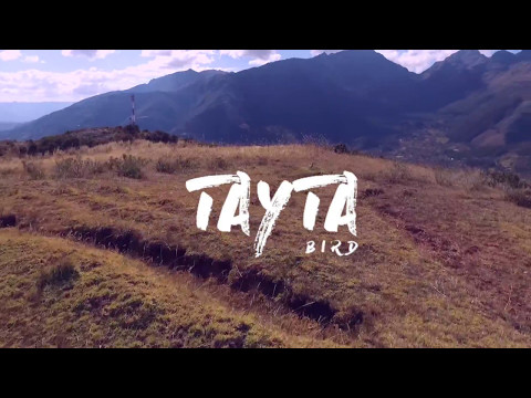 Tayta Bird - Wifala (feat. Jose Maria Arguedas)